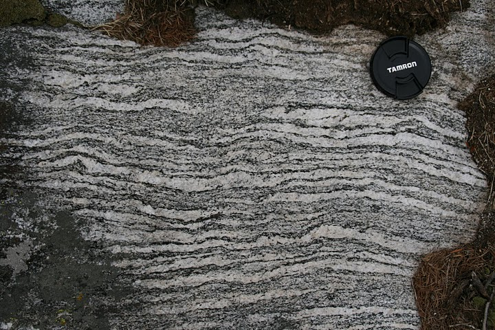 Geology Word Of The Week M Is For Migmatite Georneys
