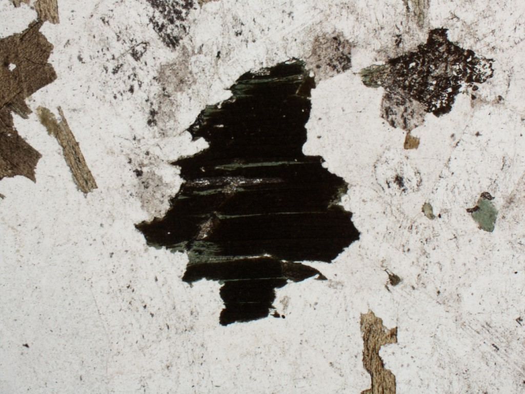 ... changes from brown to dark gray when the thin section is rotated