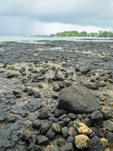 Monday Geology Picture: Black Basalt on the Beach, Mauritius