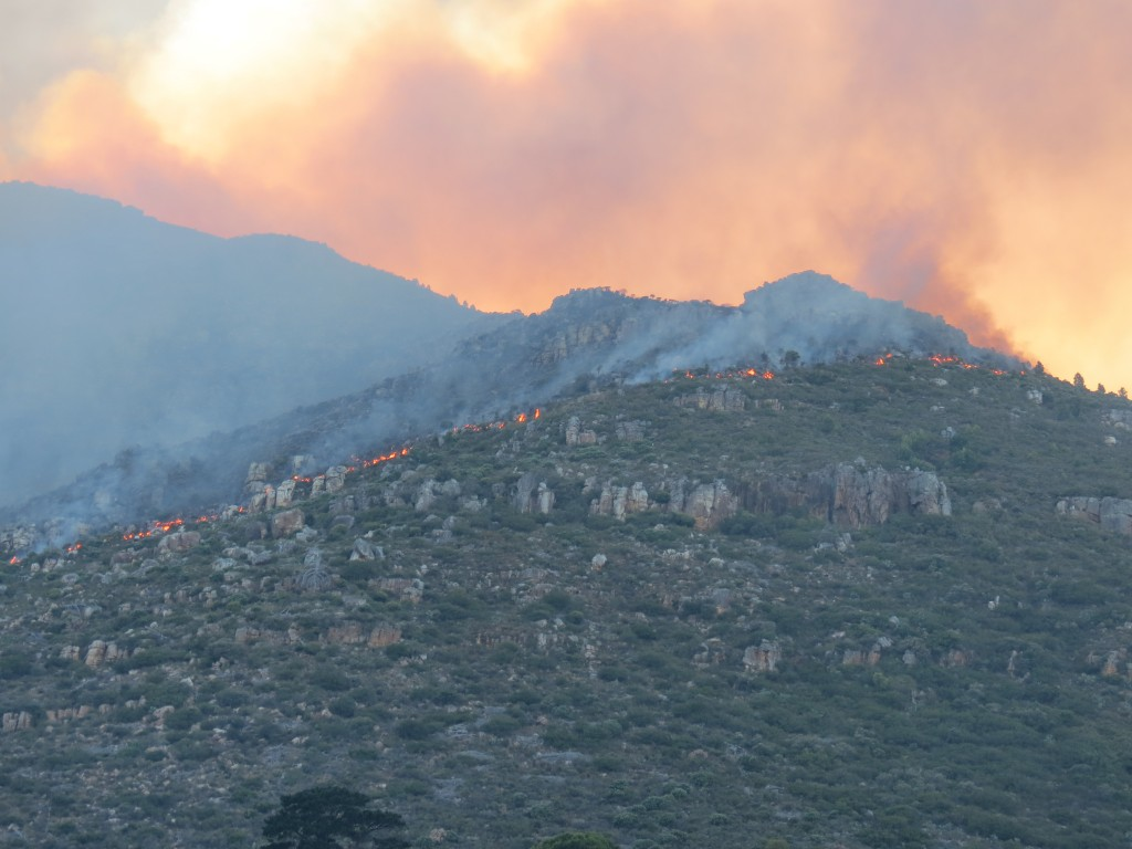 Hout Bay Fire #4. Picture courtesy of Nils Backeberg.