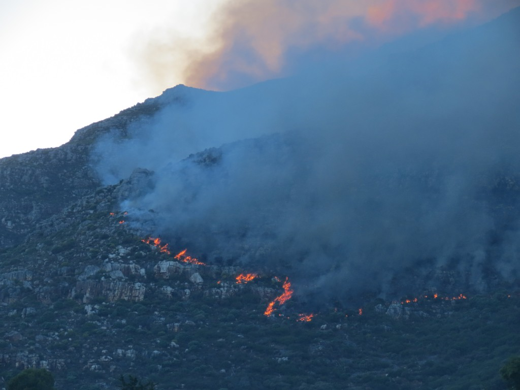 Hout Bay Fire #5. Picture courtesy of Nils Backeberg.