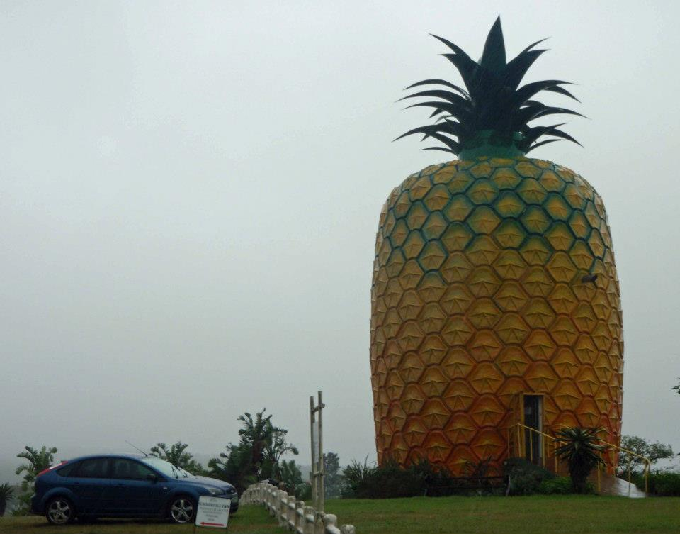 The Big Pineapple In Bathurst South Africa Georneys
