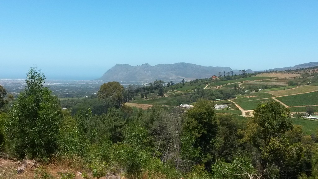 A view of some of Cape Town's winelands. Picture taken December 2013.