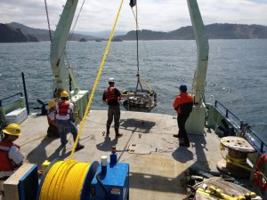 Rosebud being deployed on the R/V Oceanus in 2012. On the R/V Sikuliaq, the yellow cable will be used to transmit water to the lab on the ship.