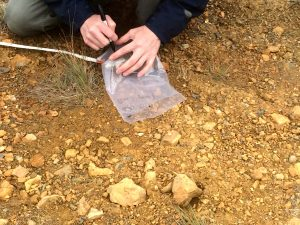 Ian Power bags and labels a listvenite sample at one of our first sampling sites.