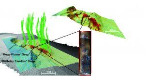 Image of a marine seep derived from sonar data. Credit: Garrett Mitchell.