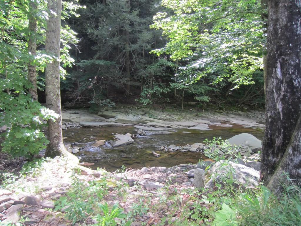 Cross-stratification in the bedrock of the creek.