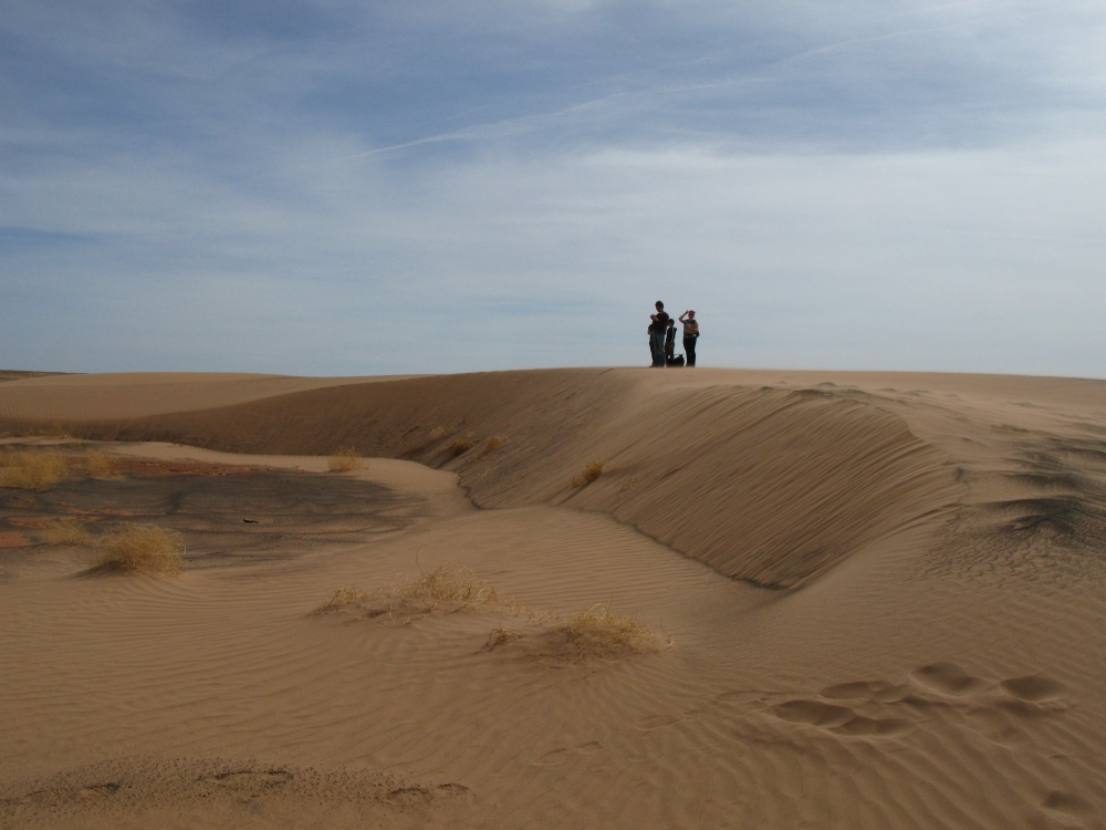 """A boomerang-shaped """"barchan dune"""". The points, or """"horns"""" of the dune point in the direction that the wind is blowing. In this image, the wind that formed the dune was blowing roughly from right to left."""