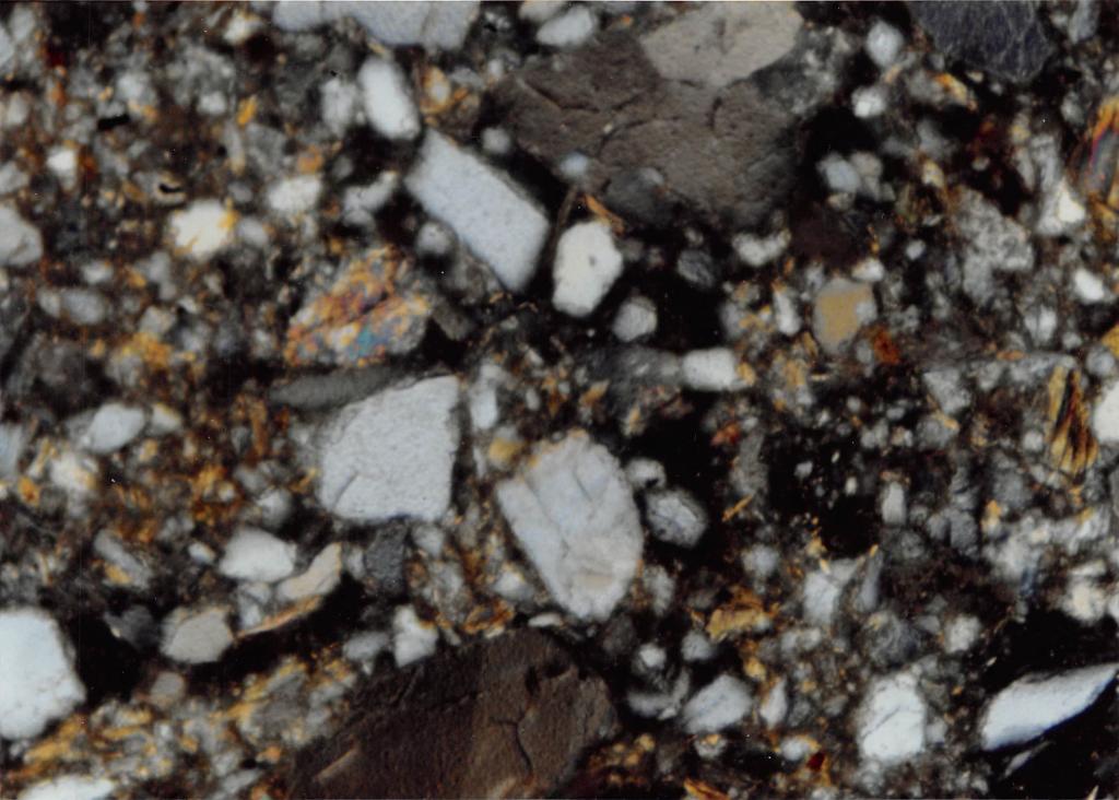 "Soil from ""C"" horizon lacking cutans coating grains."
